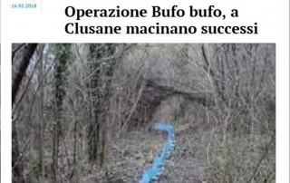 20180214-Bresciaoggi-CostaVerdeNatura-OperazioneBufoBufo