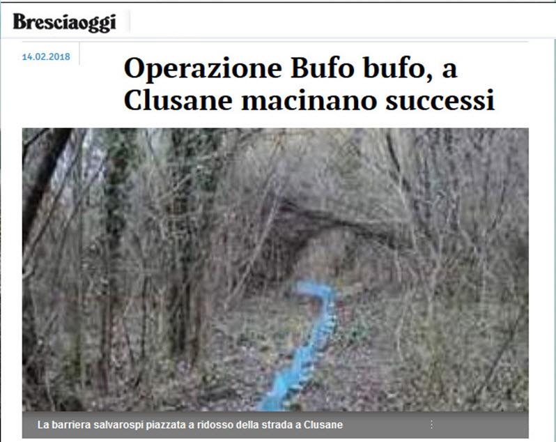 Operazione Bufo Bufo